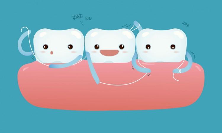 36814273 - teeth with dental floss for healthcare