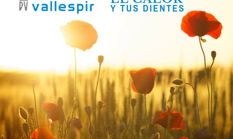 3ºBLOG_JUNIO_VALLESPIR