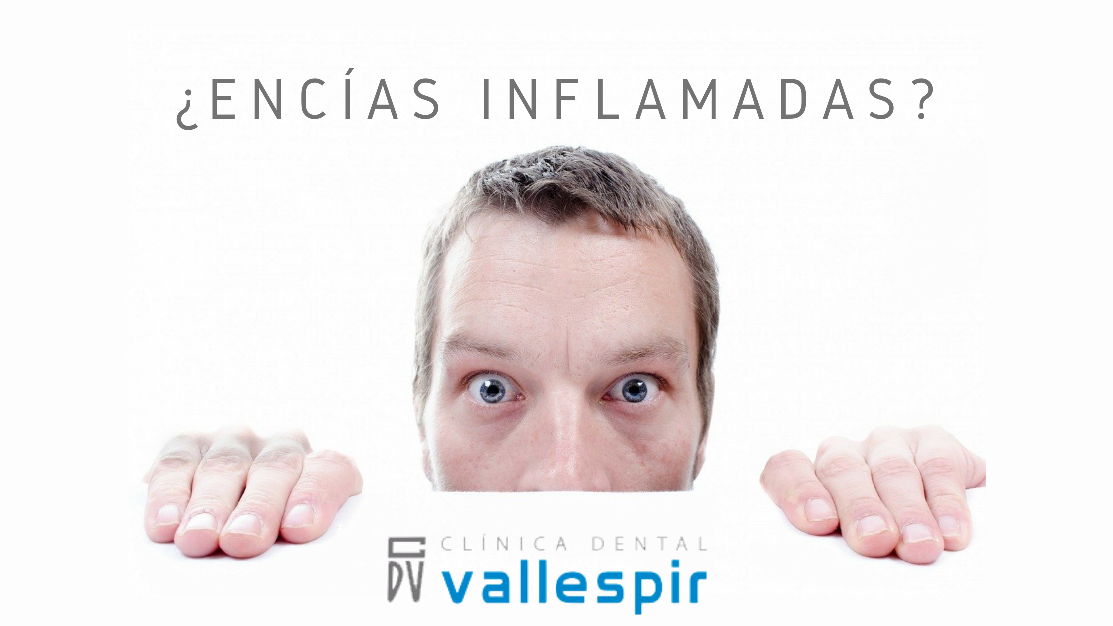 2ºBLOG_FEB_VALLESPIR